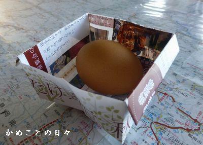 P1100386-egg.jpg