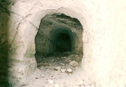 新宿横穴墓群防空壕