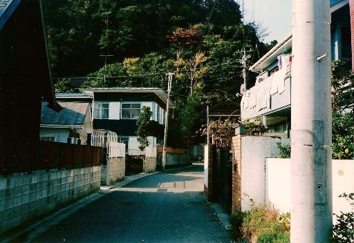 新宿横穴墓群遠景