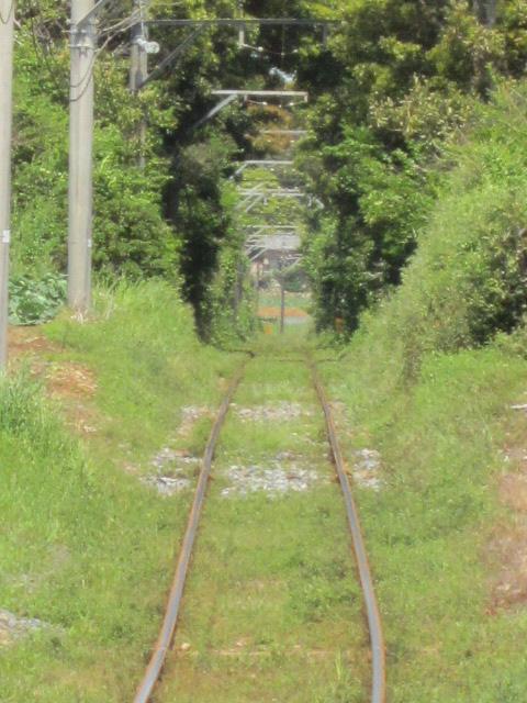 銚子電鉄 夏前ですね