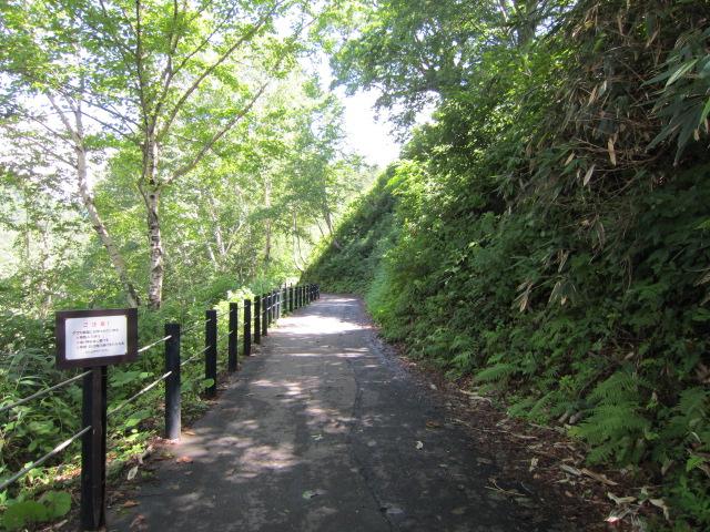 熊注意 ホテルからの道2 2012玉川温泉