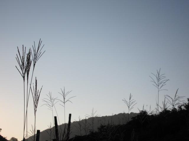 日没前 綺麗でしょ 玉川温泉2012