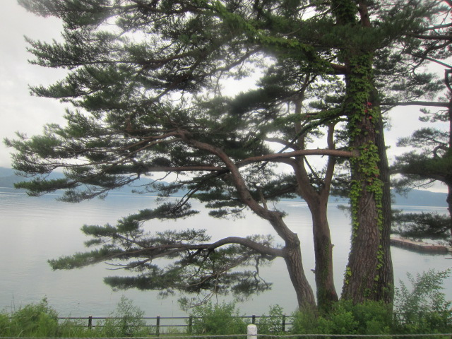 田沢湖 2012
