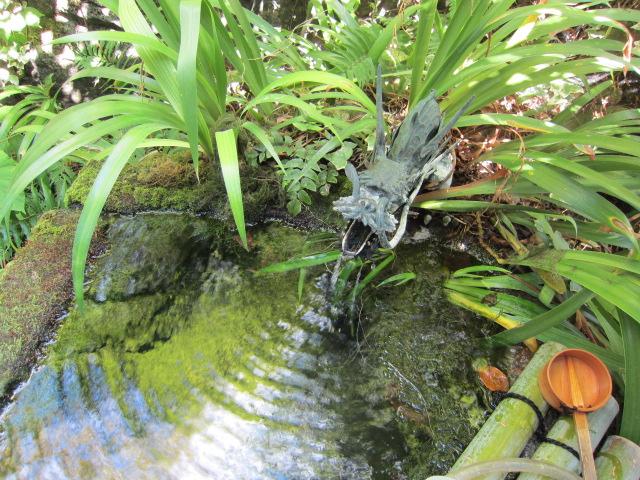 姫の井戸の水