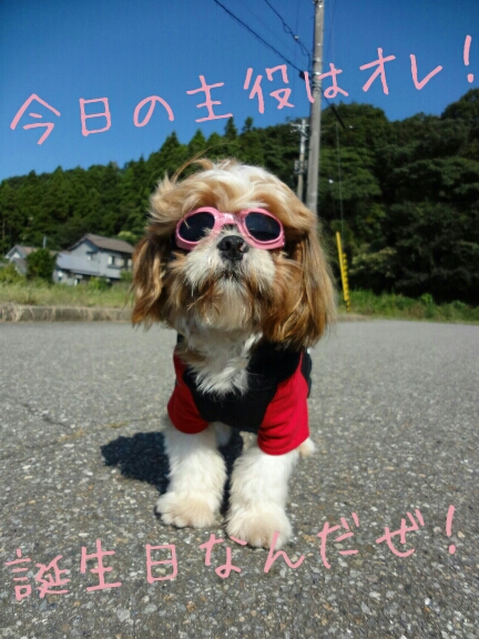 fc2blog_20120914225121408.jpg