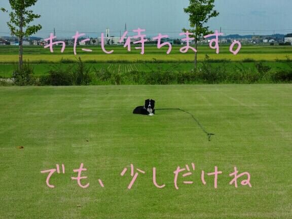 fc2blog_2012091601323151d.jpg