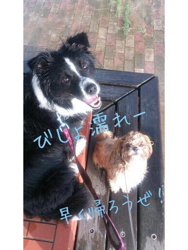 fc2blog_20120916014140e4d.jpg