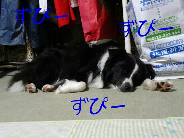 fc2blog_20120925233723d8c.jpg