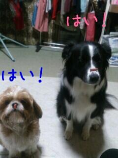 fc2blog_20120929201541df5.jpg