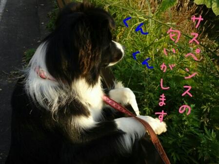 fc2blog_20121102000520498.jpg