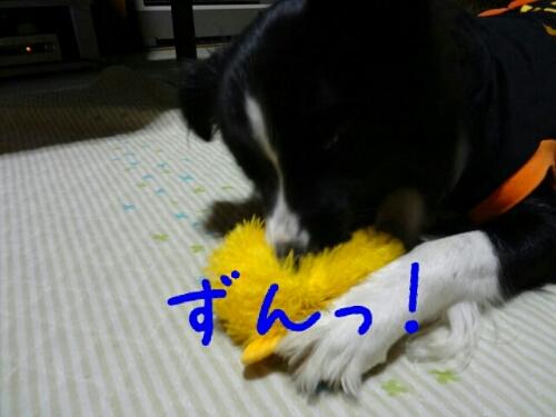 fc2blog_20121109001013450.jpg