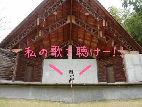 fc2blog_20121216235226570.jpg