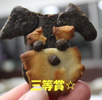シュナクッキー