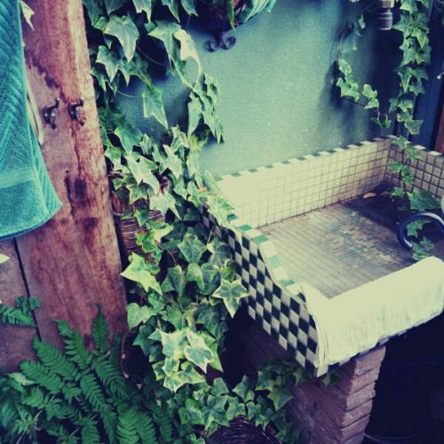 fc2blog_20121010175539e5c_20121012151907.jpg