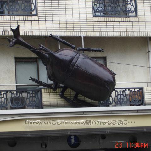 TOKYO元気ウォーク かっぱ橋道具街 2012-11-23