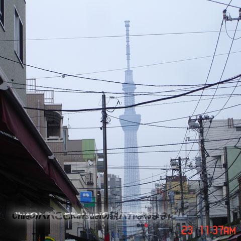 TOKYO元気ウォーク 東京スカイツリー 2012-11-23