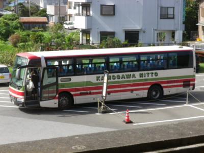 IMGP4911.jpg