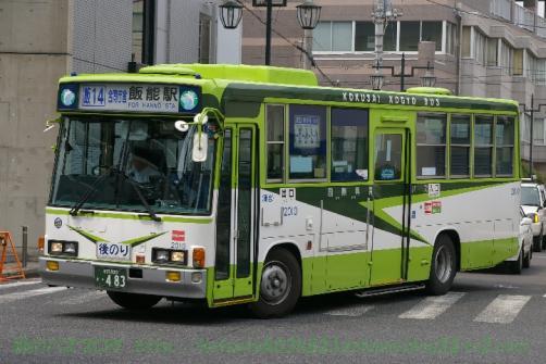 IMGP0253.jpg