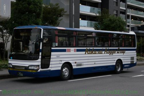 IMGP3936.jpg