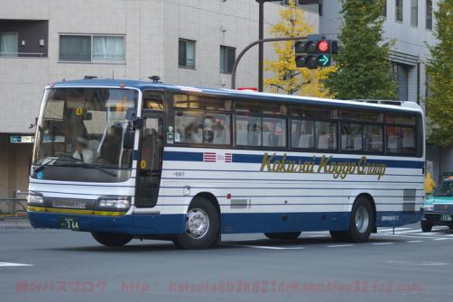 IMGP4999.jpg