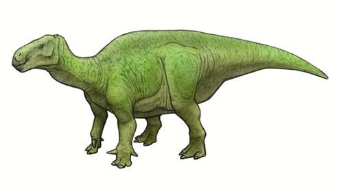 iguanodon-E696B0E5BEA9E58583.jpg