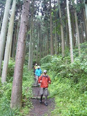 20120609norumatsuiboishi-P1180847.jpg