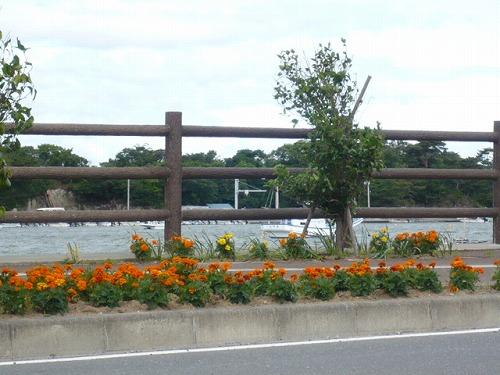 20120623okumatsushima-P1180945.jpg