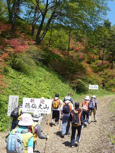 nordichikingtokusenjo201205-P1180773.jpg