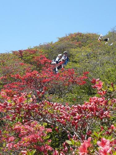 nordichikingtokusenjo201205-P1180786.jpg