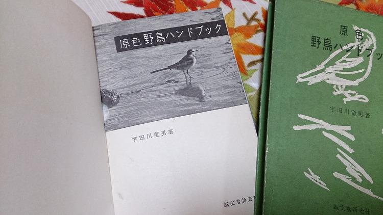 宇田川竜男