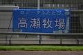 131010川崎9Rロジータふたたびの横断幕