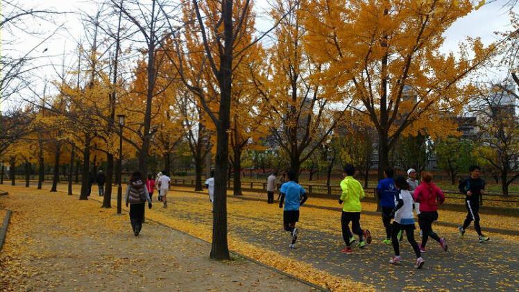 run120112 (6)