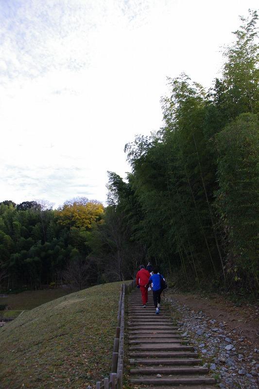 asuka (40)