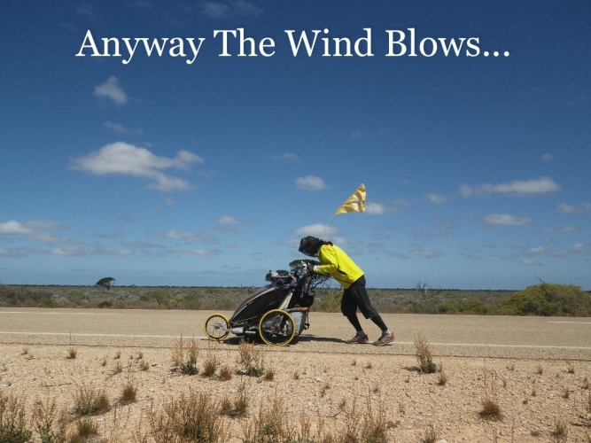 anyway_the_wind_blows.jpg