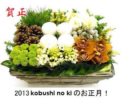 2013_001.jpg