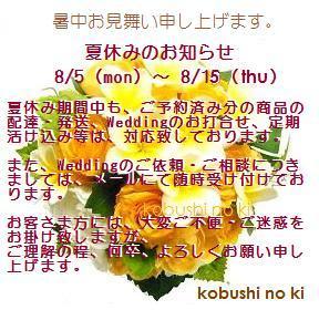 summer_2013.jpg