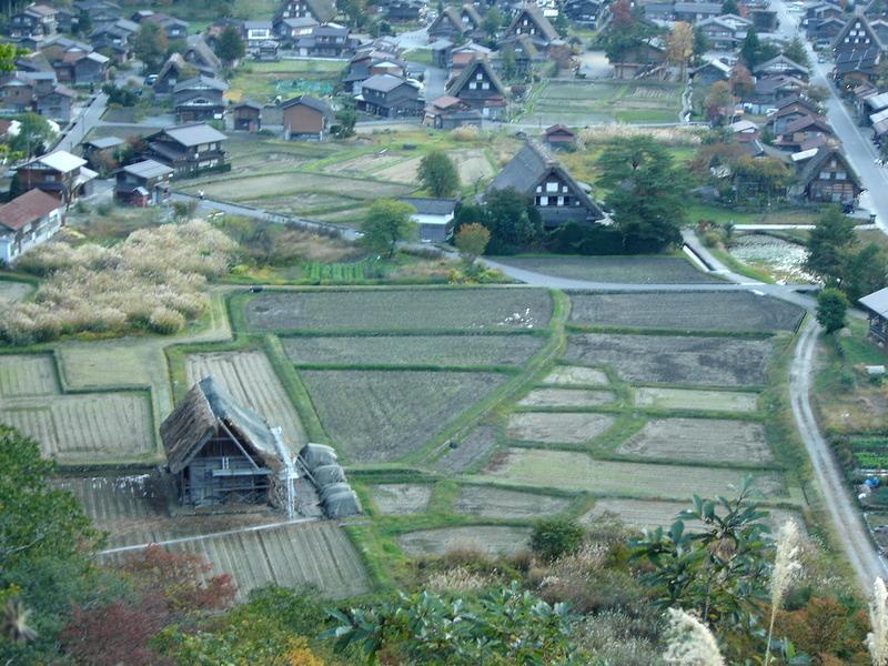秋風が足早に駆け、朝晩はヒンヤリ~白川郷の紅葉はこの時期からがピークを迎えます~ ②