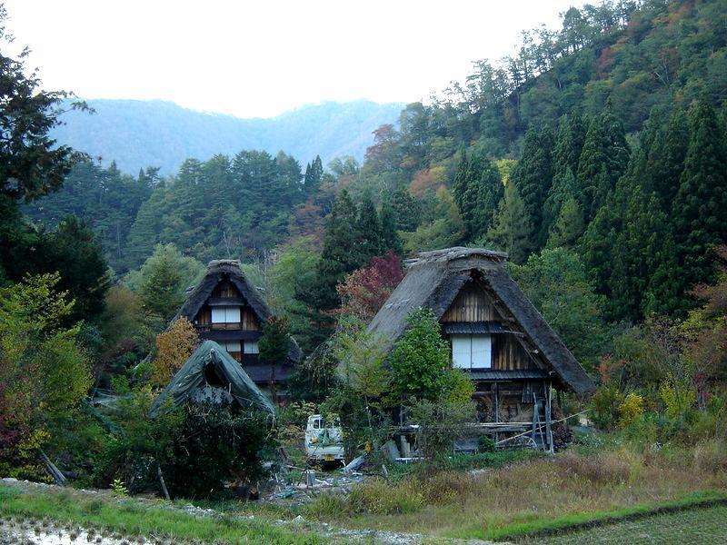 秋風が足早に駆け、朝晩はヒンヤリ~白川郷の紅葉はこの時期からがピークを迎えます~ ③