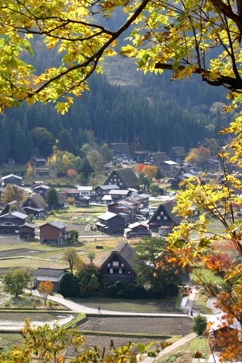 11月3連休(上旬)文化の日 紅葉シーズン ③