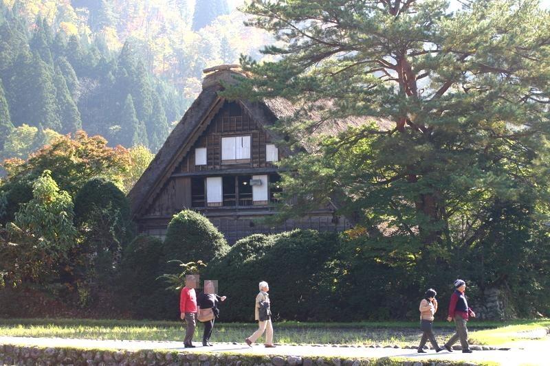 11月3連休(上旬)文化の日 紅葉シーズン ⑤