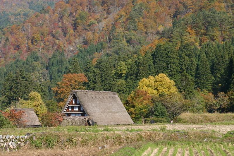 11月3連休(上旬)文化の日 紅葉シーズン ⑦