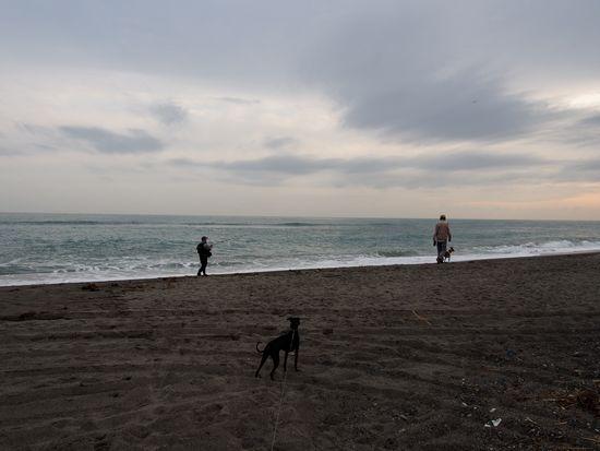 いつもの浜よりもきれいです。