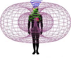 意識、基礎波動相関図