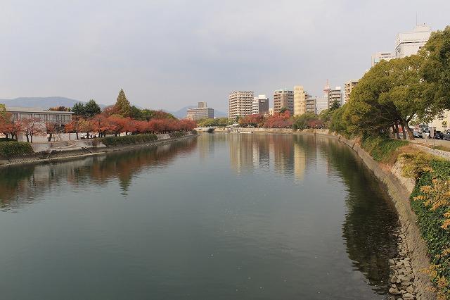 IMG_8626.jpg