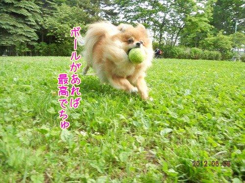 20120608_02.jpg
