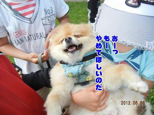 20120608_05.jpg
