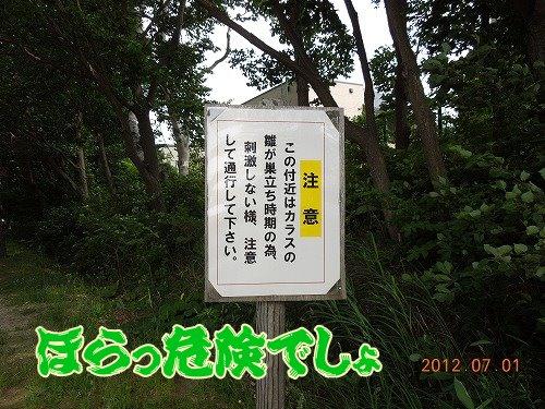 20120701_001.jpg