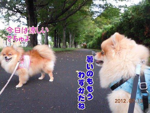 20120714004.jpg