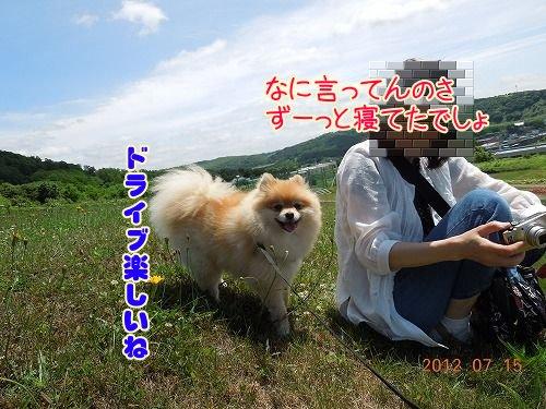 2012071509.jpg