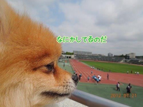 2012072102.jpg